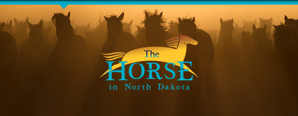 The Horse in North Dakota