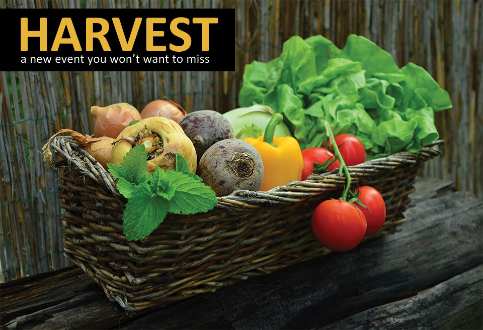 Basket of freshly picked vegetables with the text HARVEST - a new event you won
