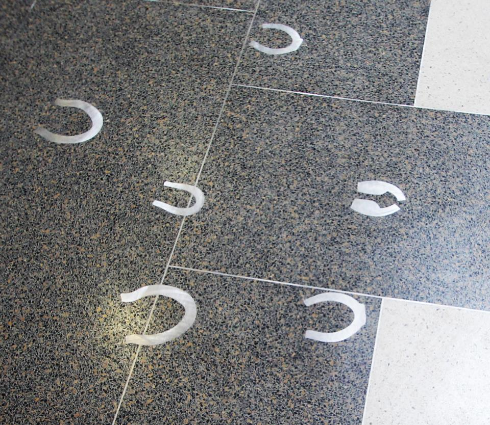 Horse, Ox, and Mule Prints in the floor of the Corridor of History